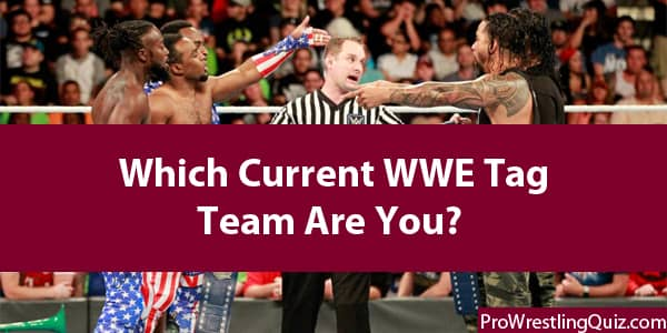 Which WWE Tag Team Are You?