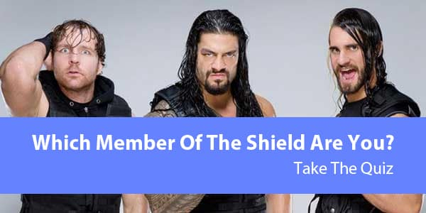 Which Shield Member Are You?