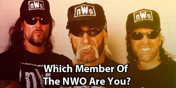 Which NWO Member Are You?
